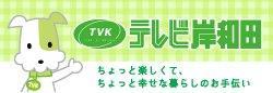 テレビ岸和田